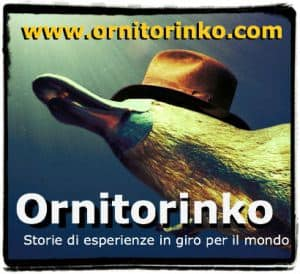 ornitorinko