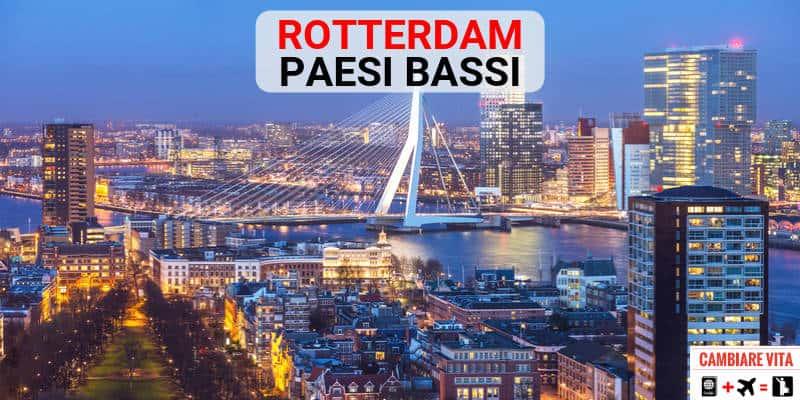 Lavorare Vivere a Rotterdam Paesi Bassi